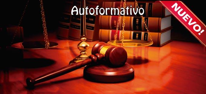 Los mecanismos internos de protección y promoción de los Derechos Humanos.